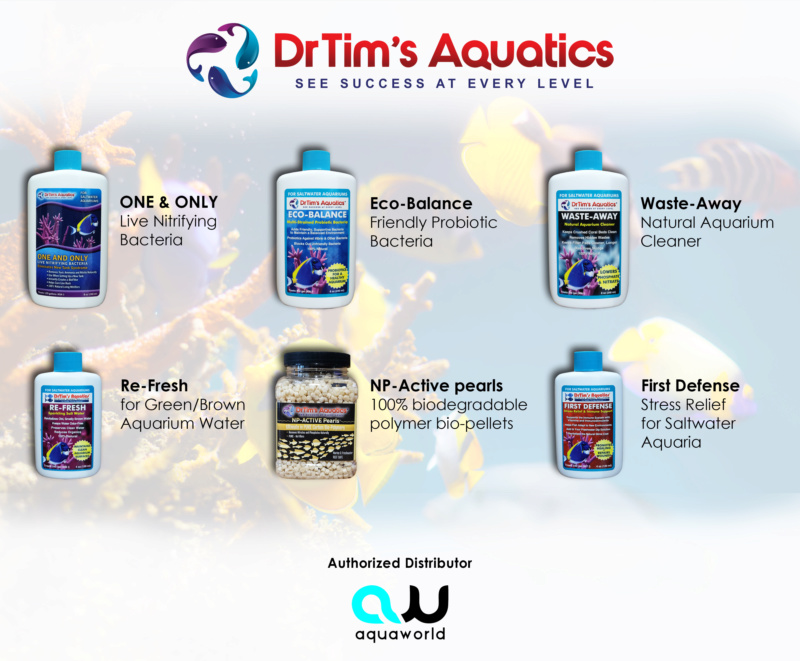 Dr Tim Aquatics ready at Aquaworld ! Dr_tim10