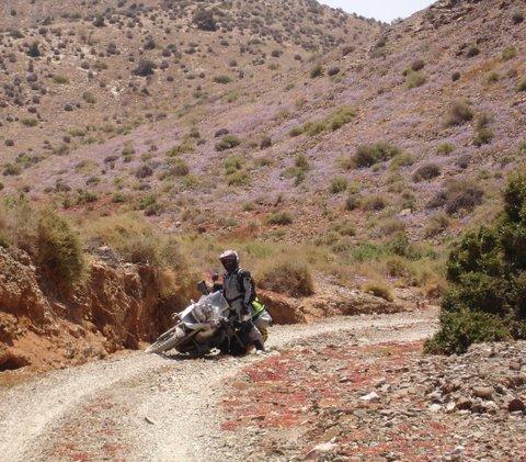 Maroc 2016   Africa twin 750 préparée / BM 1200 GS P'tites  fotossss Dsc00410