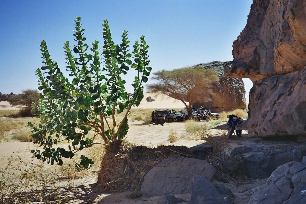 Gamelles Maroc  !!!  Pause_10