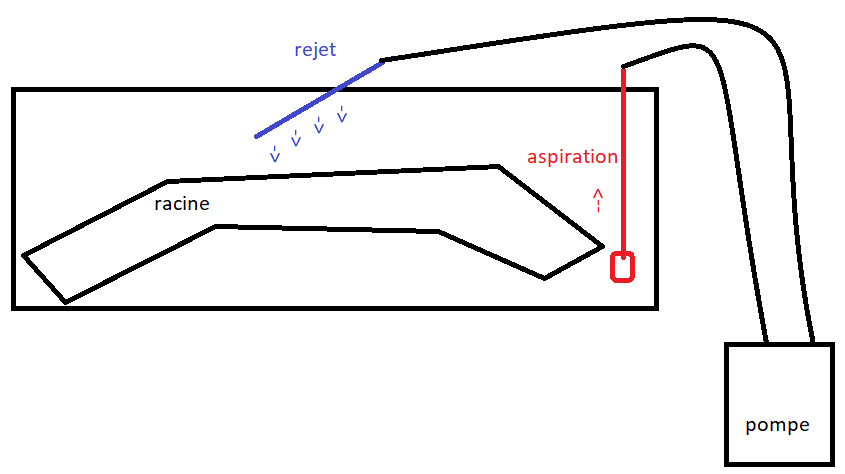 Démarrage de mon bac 350 litres (Eau douce) - Page 3 Schzom10
