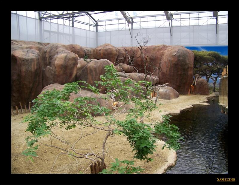 Le zoo de Rotterdam 028110