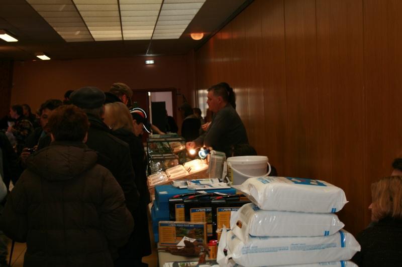 Bourse tous poissons St Saulve 2013 Img_6822