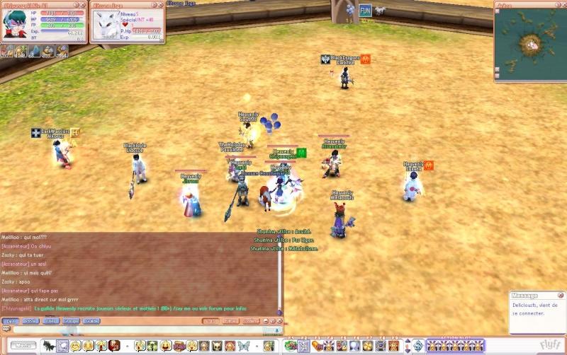 Screen de flyff - Page 2 Flyff011