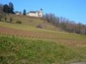 Ballade à travers le gros de Vaud II P1030210
