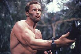 Ces stars qu'on ne croirait jamais aussi diplômées... Arnold10