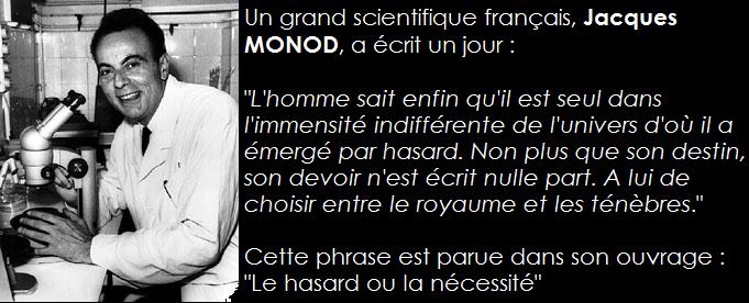 La Pensée / Citation du Jour - Page 15 Citati20