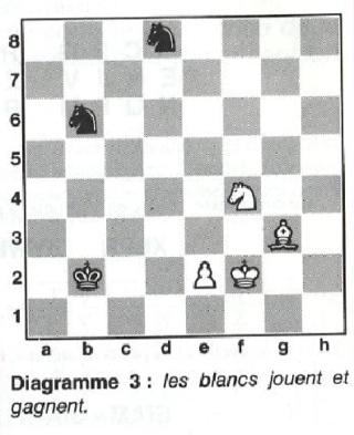 Les Echecs, ce Roi des jeux : 64 cases, 32 pièces, etc ... - Page 2 Les_bl11