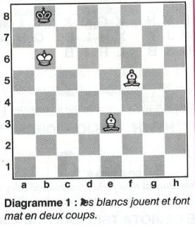 Les Echecs, ce Roi des jeux : 64 cases, 32 pièces, etc ... - Page 2 Mat_en10