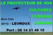 SAM 15 juin - VIERZON - FÊTE DES PERES - Plus 500 idées-cadeaux  Levrou10