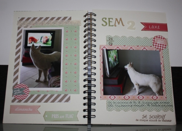 My family Diary - Liliscrap33 _ MAJ le 28/09 Captur12