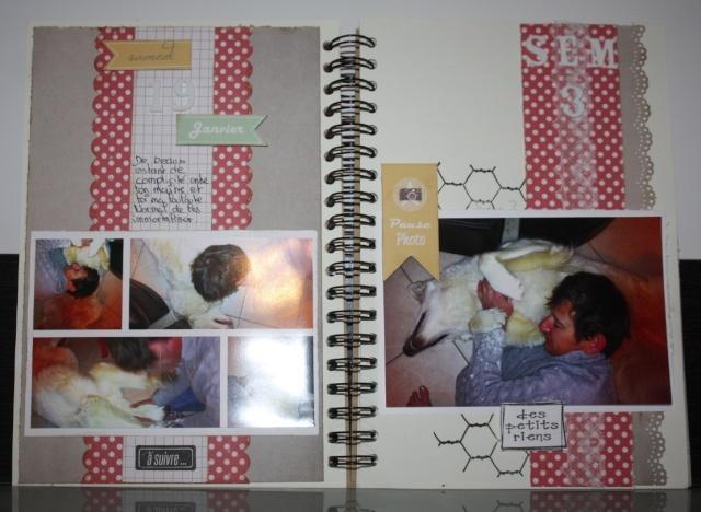 My family Diary - Liliscrap33 _ MAJ le 28/09 Captur13