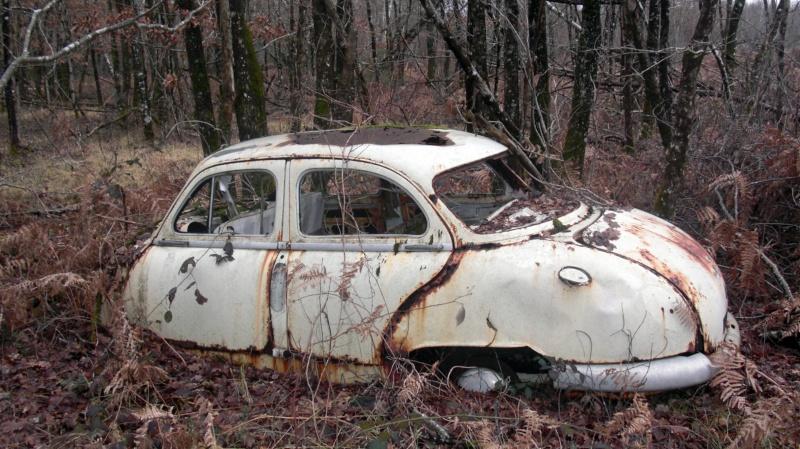 Une Panhard dans les bois... Cimg0410