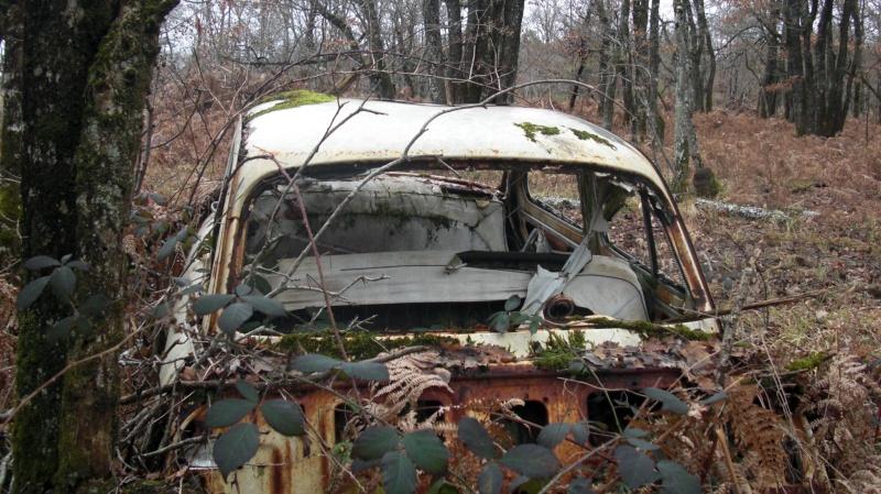 Une Panhard dans les bois... Cimg0412