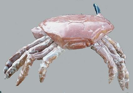 le Crabe et l'Araignée  (Marbre) P1000512