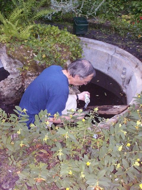 La réparation du bassin - suite 1111