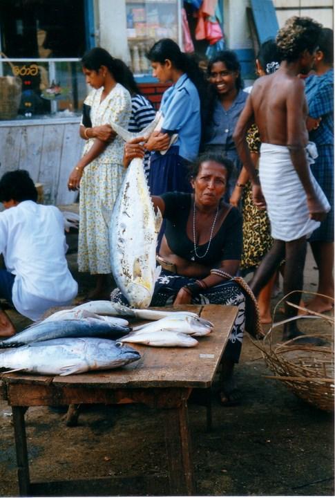 Le Sri Lanka Marchz12