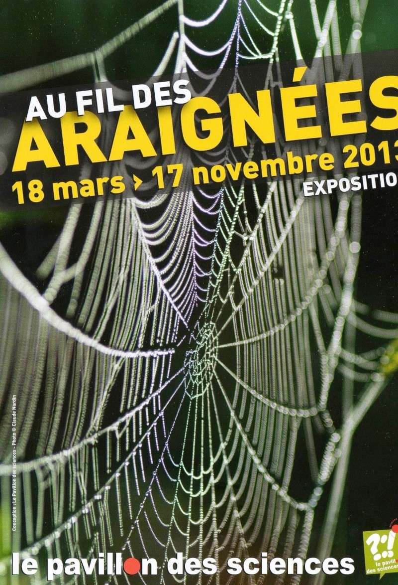 Au fil des araignées (du 18 mars au 17 novembre 2013) Expo_210