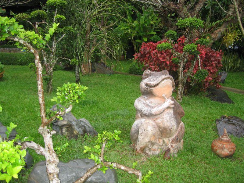 Votre photo pour decembre 2008 Img_0115