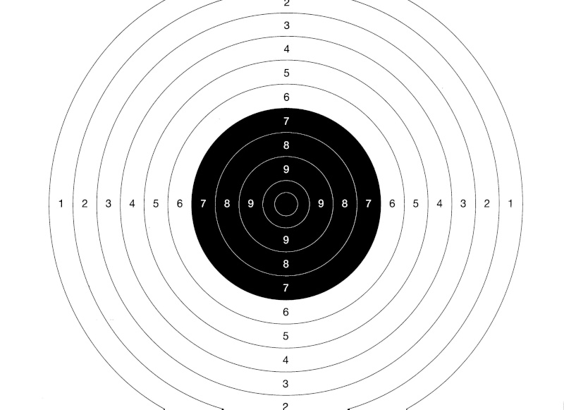 Carton Lee Enfield 9 a 50m Cible_10