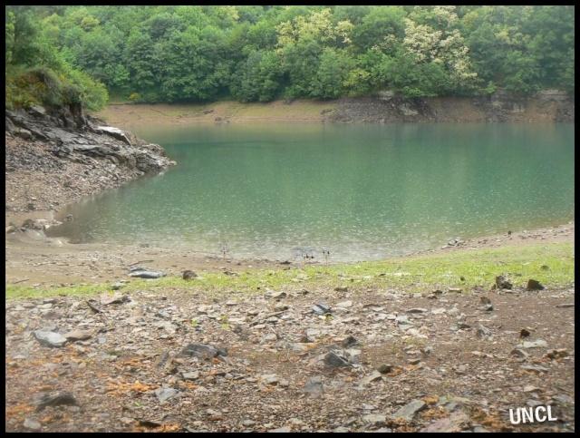Sauvetage des carpes sur le barrage de Soulage, communiqué.. Barrag13