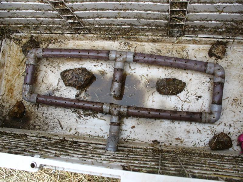 Steamer à foin, la solution pour chevaux sensibles 5-syst10
