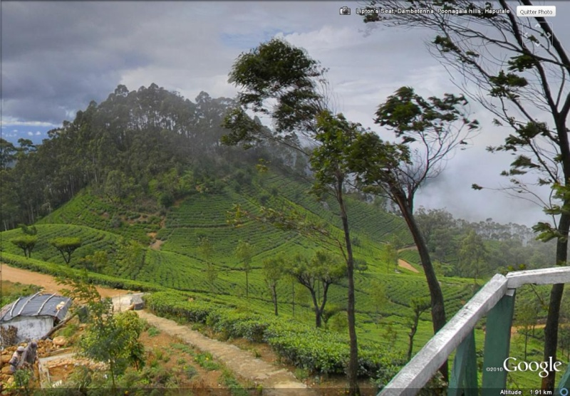 [SRI LANKA] - Les belles vues du Sri Lanka Sans_186