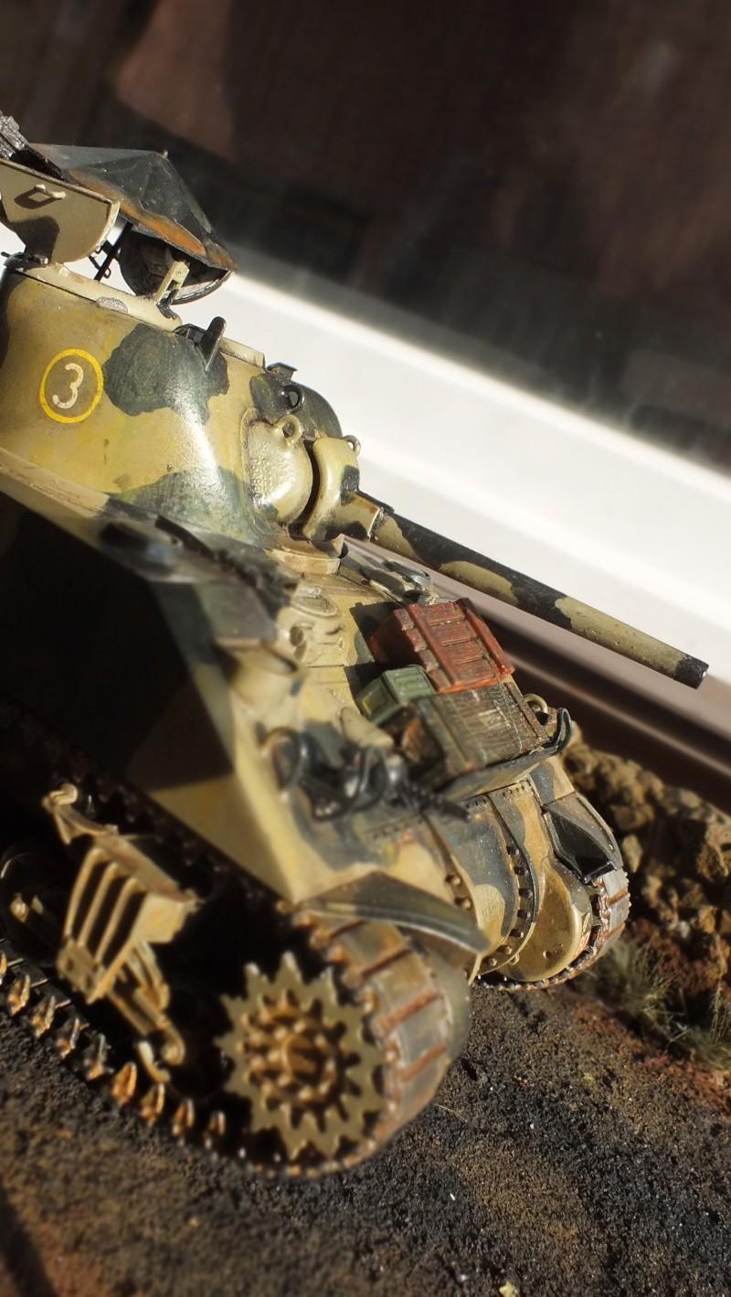 [1/35] Sherman Mk III kiwi - Page 3 Dscf0014
