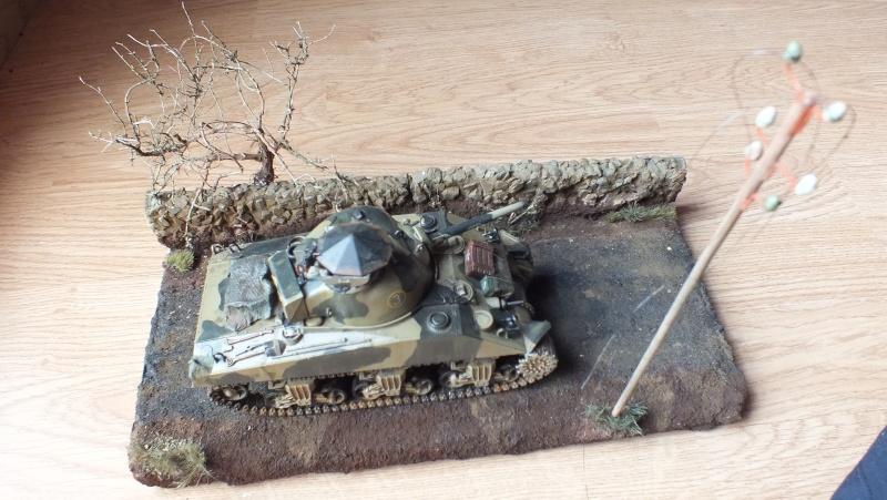 [1/35] Sherman Mk III kiwi - Page 3 Dscf0113