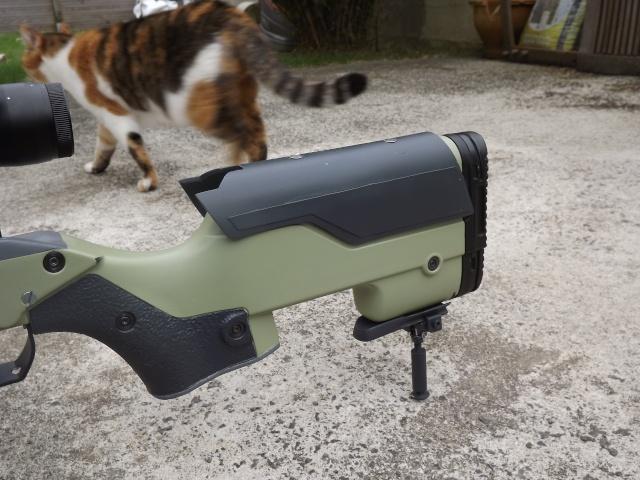 Snipe: Type 96 John Allen Enterprises Stock Dscf2514