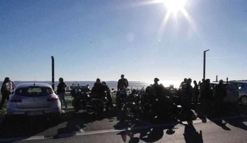 BALADE - Balade sur les falaises de l'estuaire en Charent maritime le dimanche 22 septembre Imgp2416