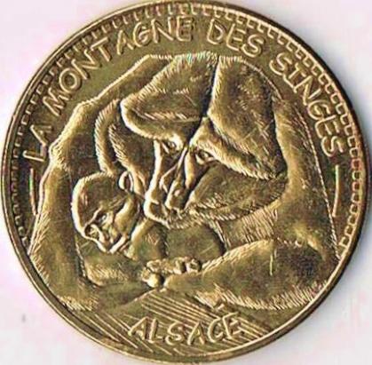 Kintzheim (67600)  [Cigoland UEJB / Montagne singes UEFL /  Volerie aigles UEFS] Alsace10