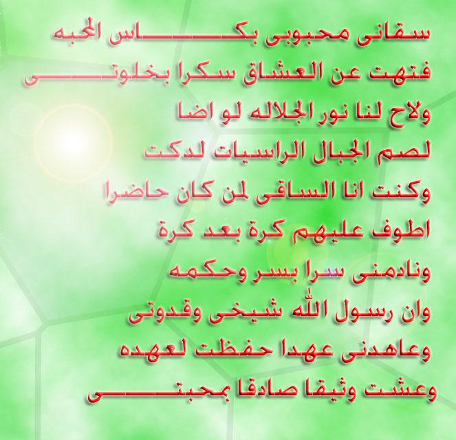 إحتفالية سيدى إبراهيم الدسوقى Des10