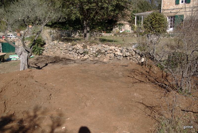 Quelques photos de mon jardin : gros projet 2013 : Evolution Mai 2014 - Page 2 Imgp5614