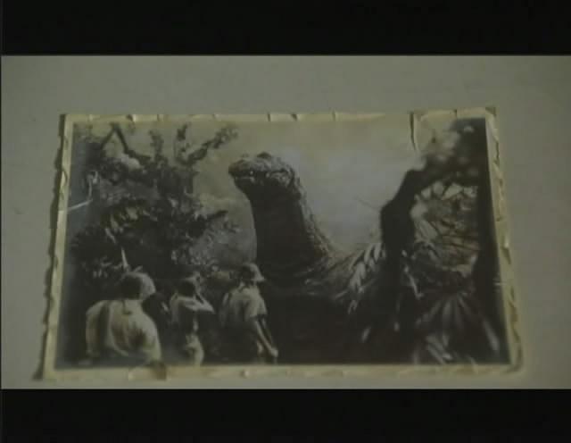 So I'm gonna watch the Godzilla movies - Page 5 1991_g13