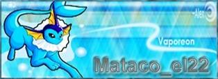 Galeria Mataquista Vapore10