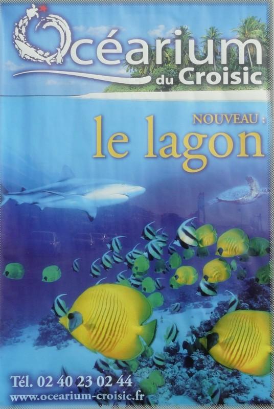 Aquarium de Le Croisic 2008-010