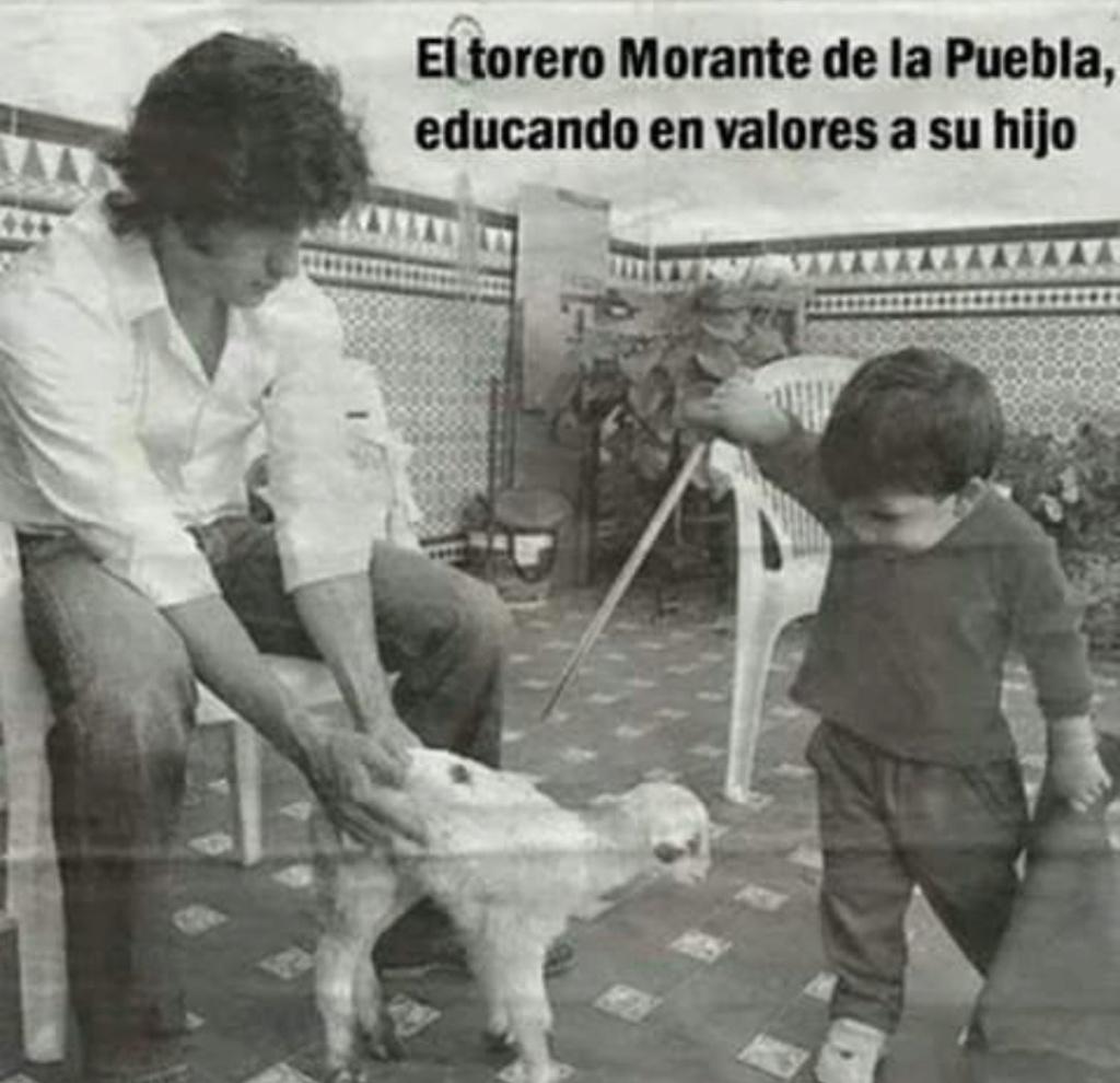 Una foto de Morante cada día - Página 6 Img_2011
