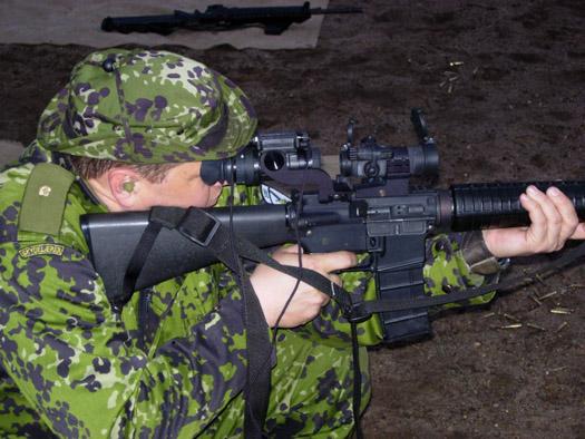 DIEMACO C7 / C8 (Colt Canada) 11183913