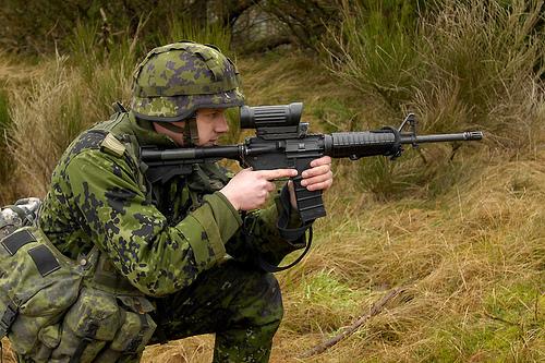 DIEMACO C7 / C8 (Colt Canada) 43358710