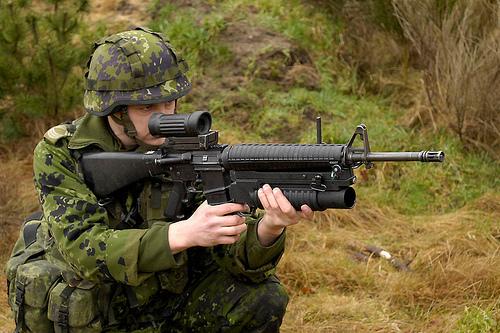 DIEMACO C7 / C8 (Colt Canada) 43366110