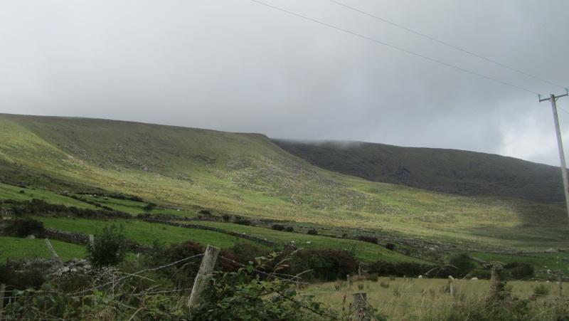 Irlande 2013 - Page 3 Dingle17