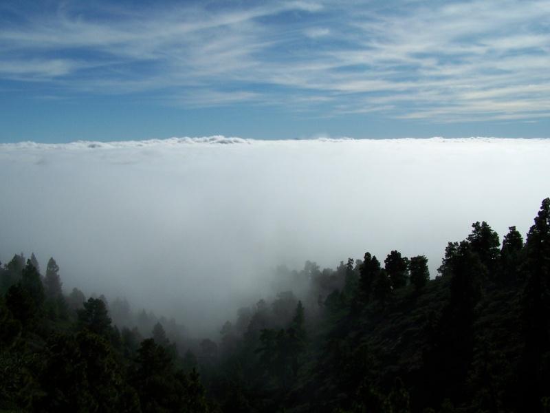 Ile de La Palma, archipel des Canaries La_pal13