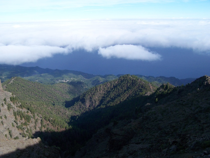 Ile de La Palma, archipel des Canaries La_pal14