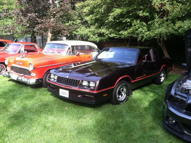my car hoarder friend has a car show at his house once a year P3010