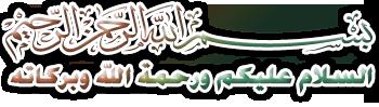 بلدية نقرين منذ نشأتها و هياكلها الاداري 24594710