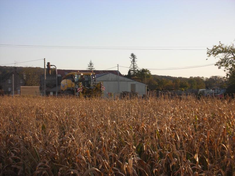 Ensilage de maïs 2008 - Page 6 Dscn1714