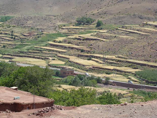 de retour du Maroc 9604 km sans panne       page 9 A_dsc234