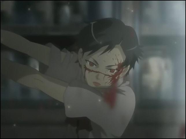 Blood+ la serie 81310