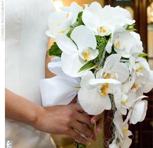 Fotos de ramos 4orchi10