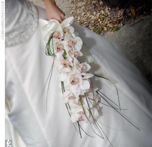 Fotos de ramos 6orchi10